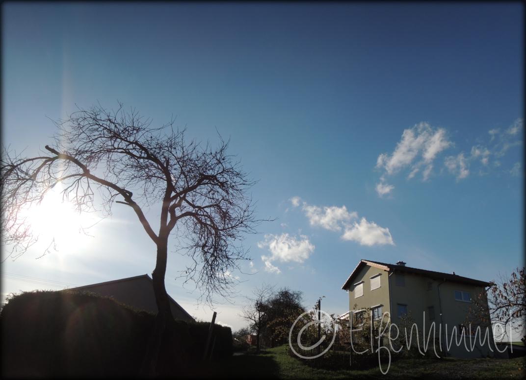 Bildschirmfoto 2013-11-06 um 15.25.50